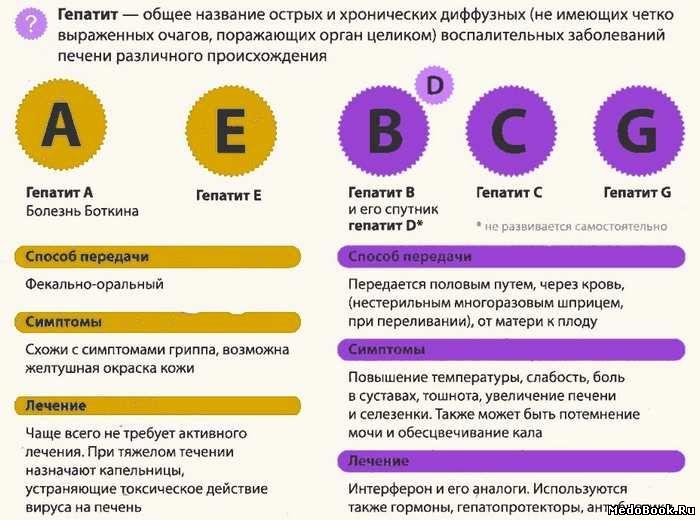 Сайт детской больницы г. кузнецк